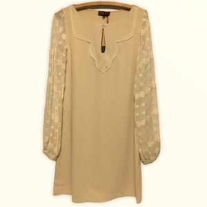 Hale Bob Tan with lace sleeves dress